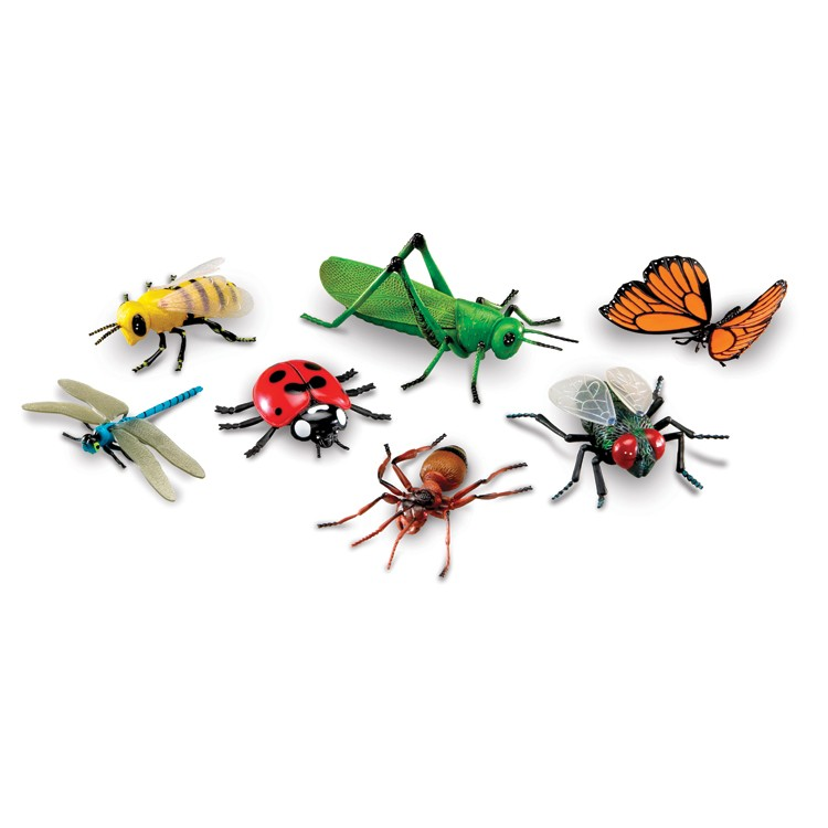 Jumbo insects pc toy. 7 clipart bug