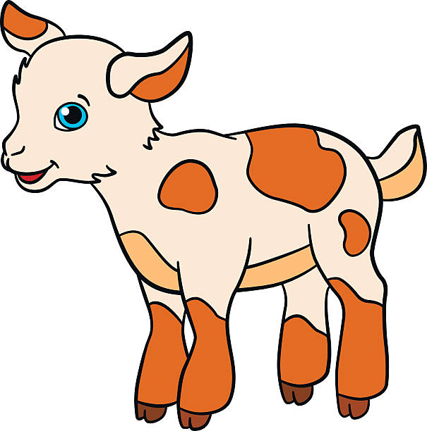 7 clipart goat. Cute station