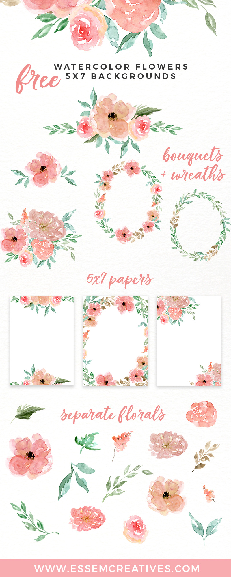 Free watercolor flowers floral. 7 clipart pink