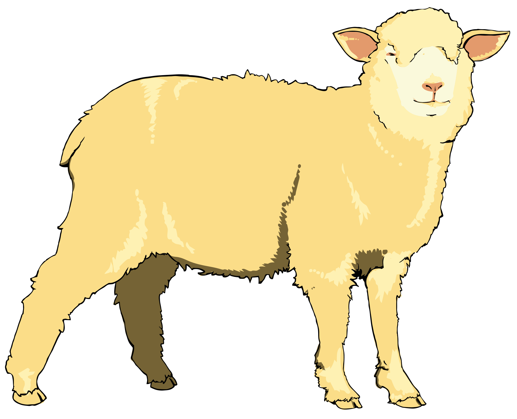 File sheep svg wikimedia. Lamb clipart realistic