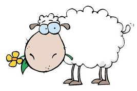 And illustration clip art. 7 clipart sheep