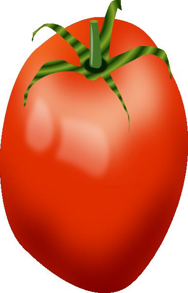 7 clipart tomato. Roma