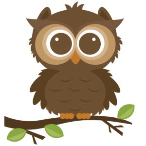 Camp clipart animal.  best owl images