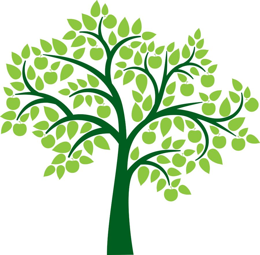 Family tree genealoy and. B clipart wood