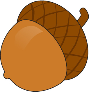 Pencil and in color. Acorn clipart animated