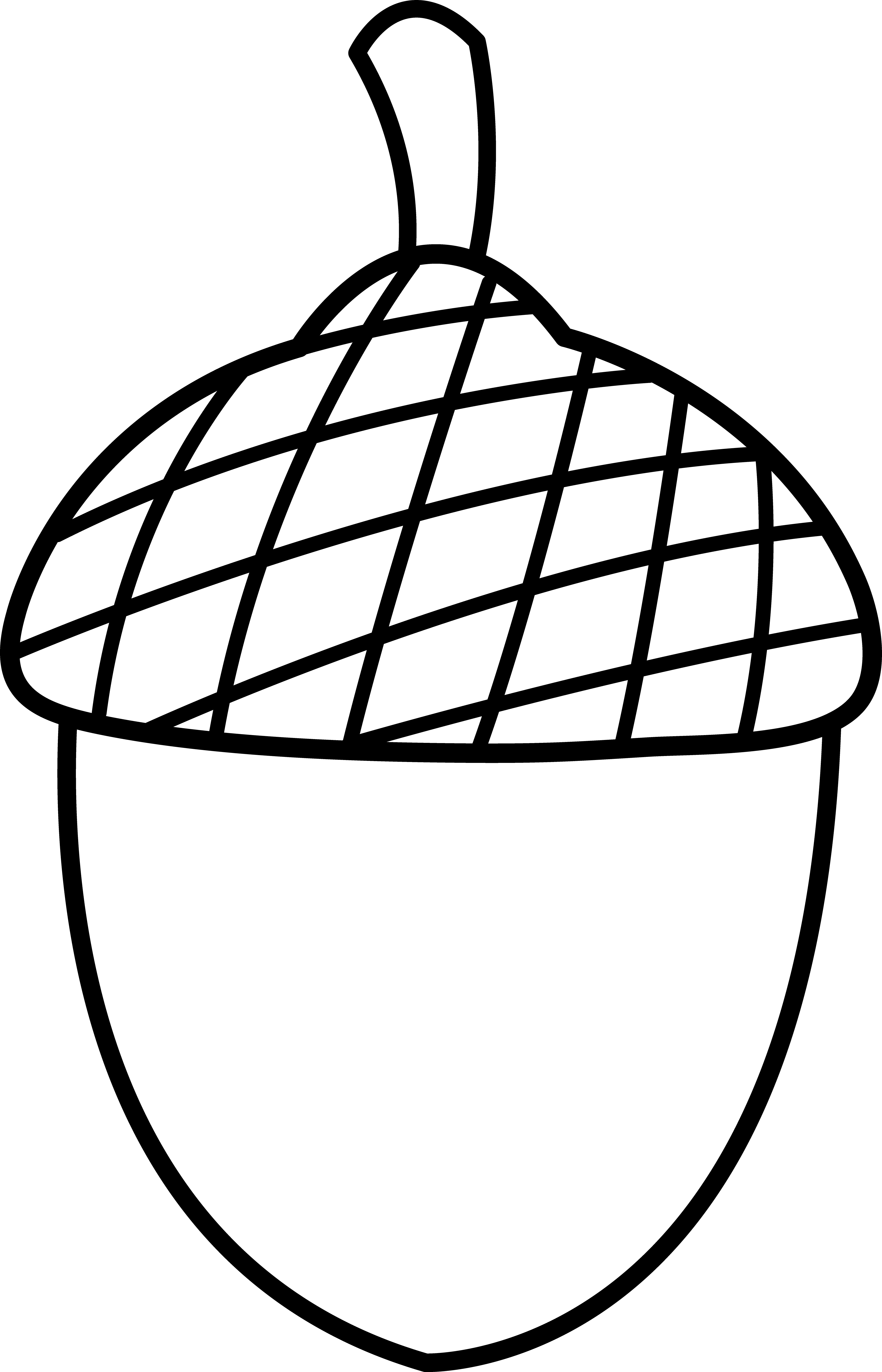Acorn . Pomegranate clipart black and white