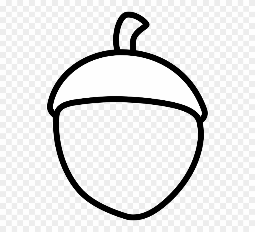 Acorn clipart black and white. Png download