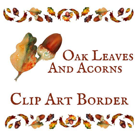 Best photos of acorns. Acorn clipart border
