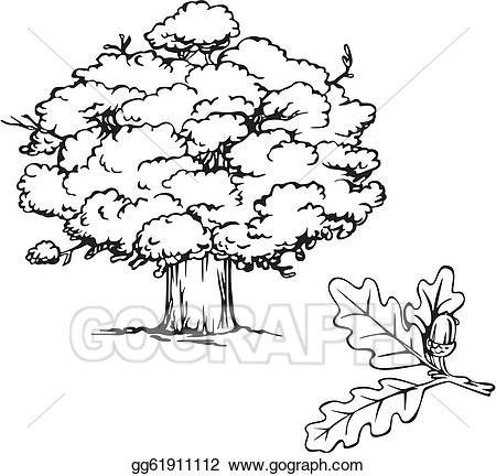 Acorn clipart branch. Vector art oak tree