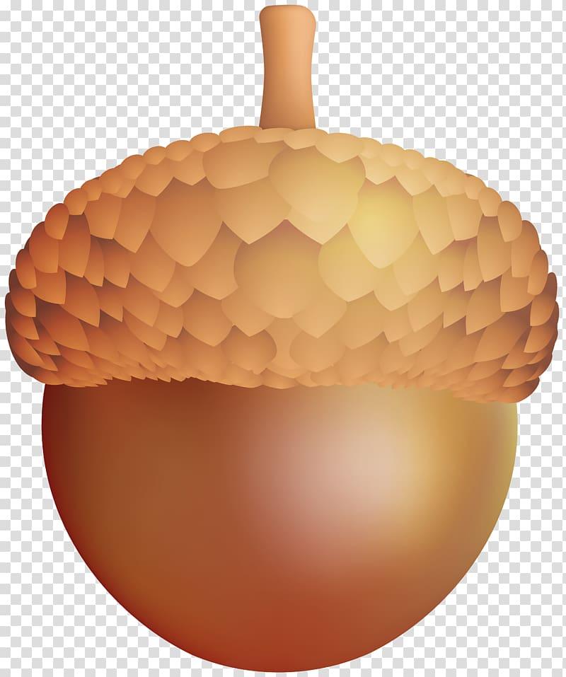Acorn clipart brown. Nut illustration transparent background