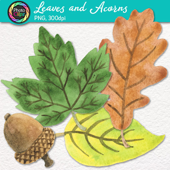 Watercolor fall leaves and. Acorn clipart leaf