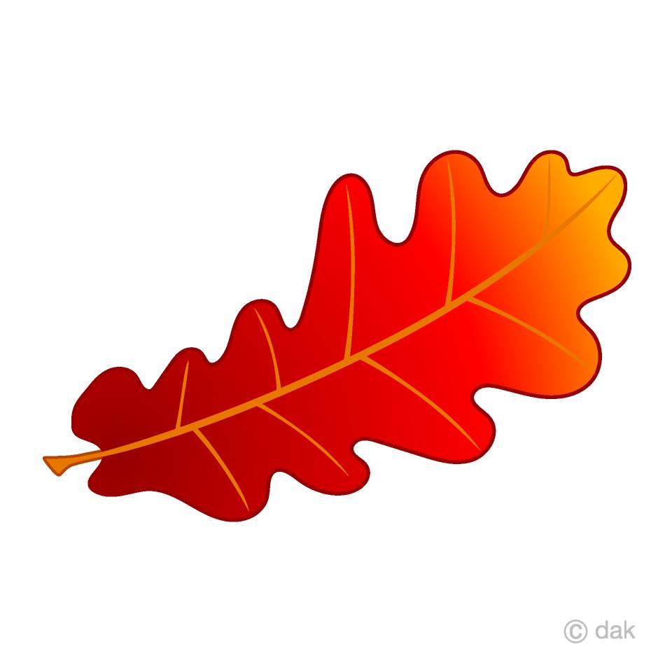Red free picture illustoon. Acorn clipart leaf