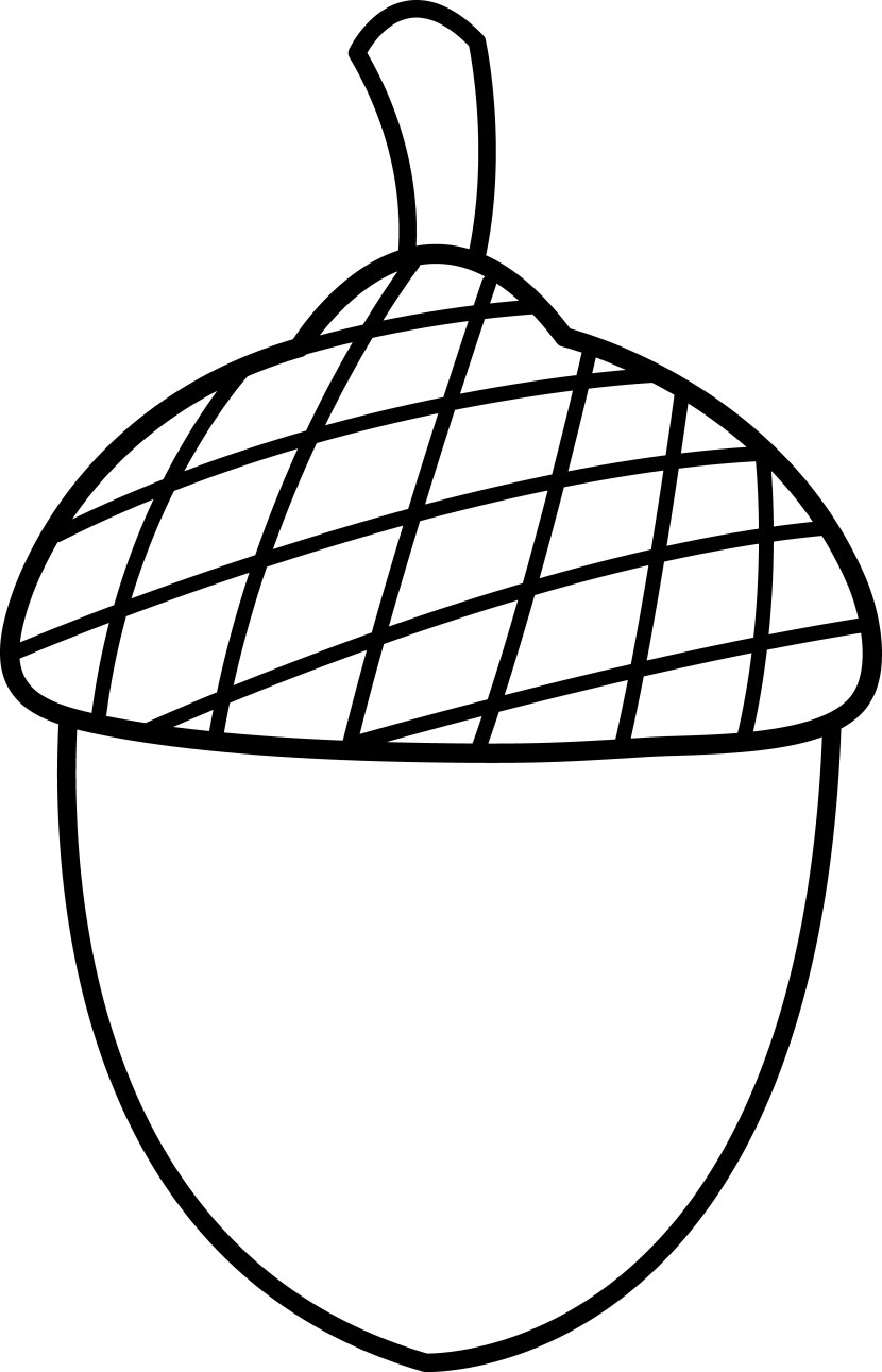 Black and white animehana. Acorn clipart nut