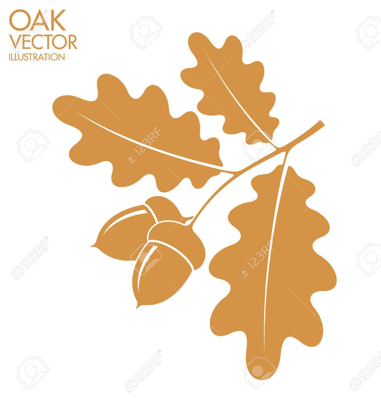Acorn clipart oak leave. Leaves and acorns station