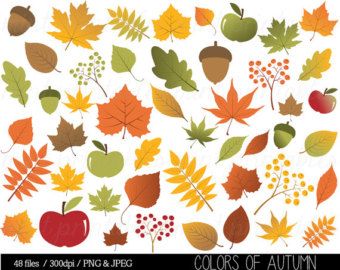 Acorn clipart painting. Fall autumn with clip