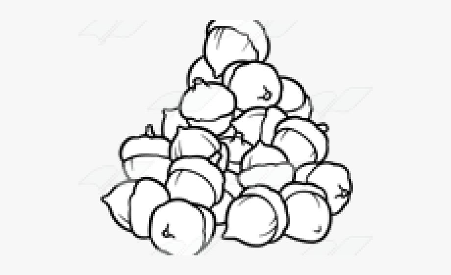 Black and white cartoon. Acorn clipart pile