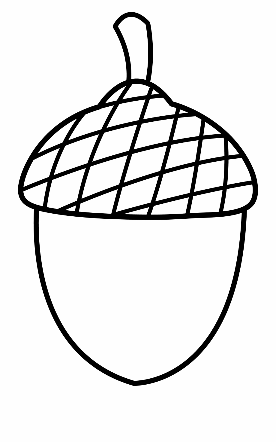 Acorn clipart printable. Squirrel with coloring page