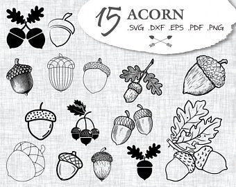 Acorn clipart svg. Etsy