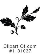 Acorn clipart vintage. Acorns illustration by prawny