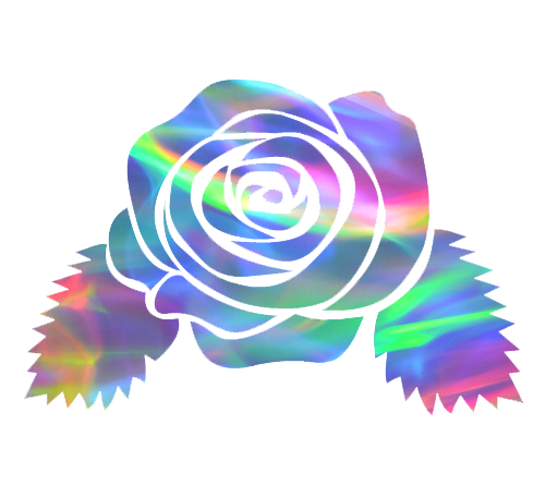 Discovered by lana rose. Aesthetic flower png