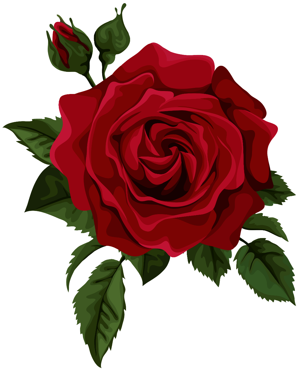 Aesthetic flower png.  roses clip black