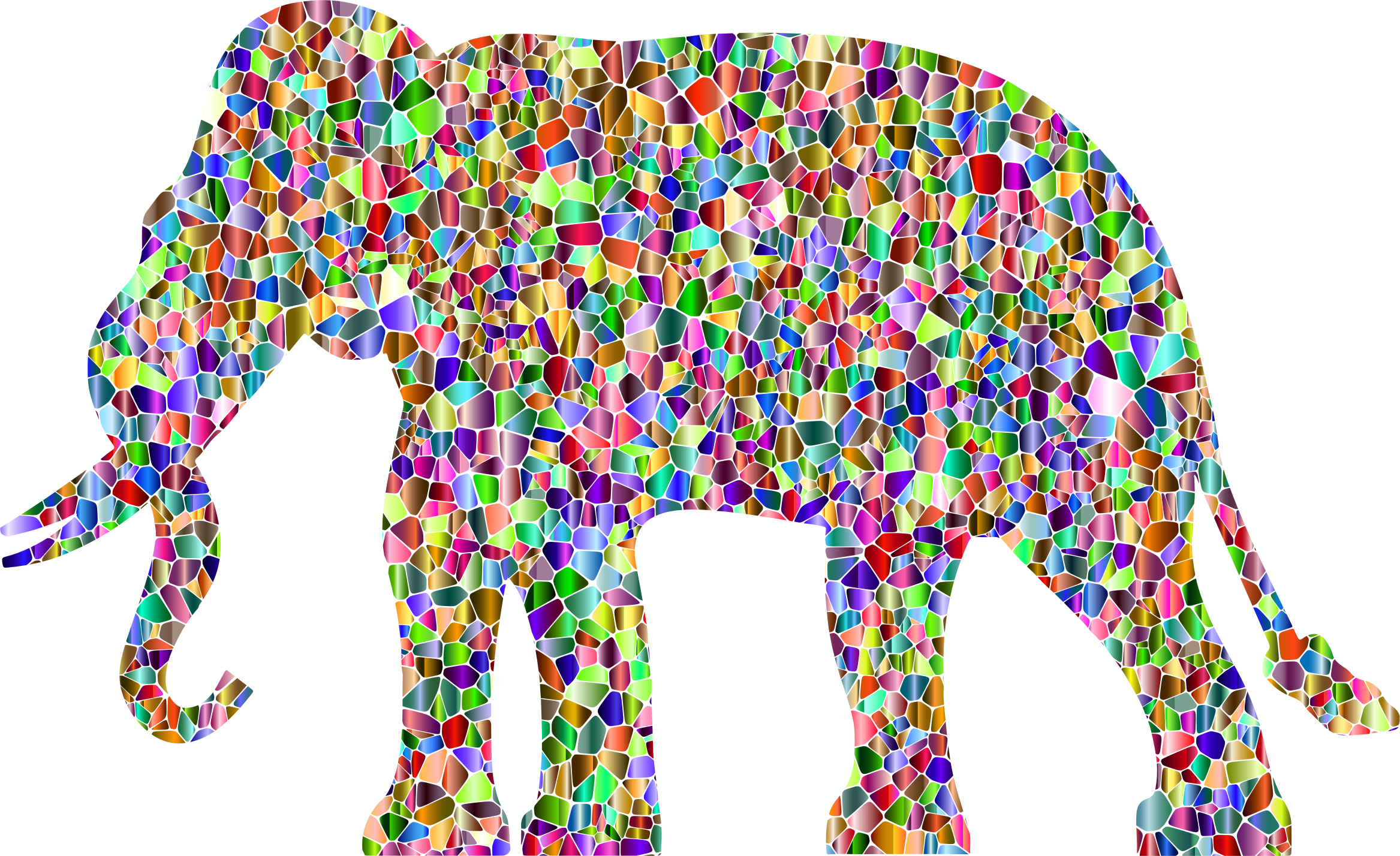 Elephant clipart rainbow. Vivid chromatic silhouette no