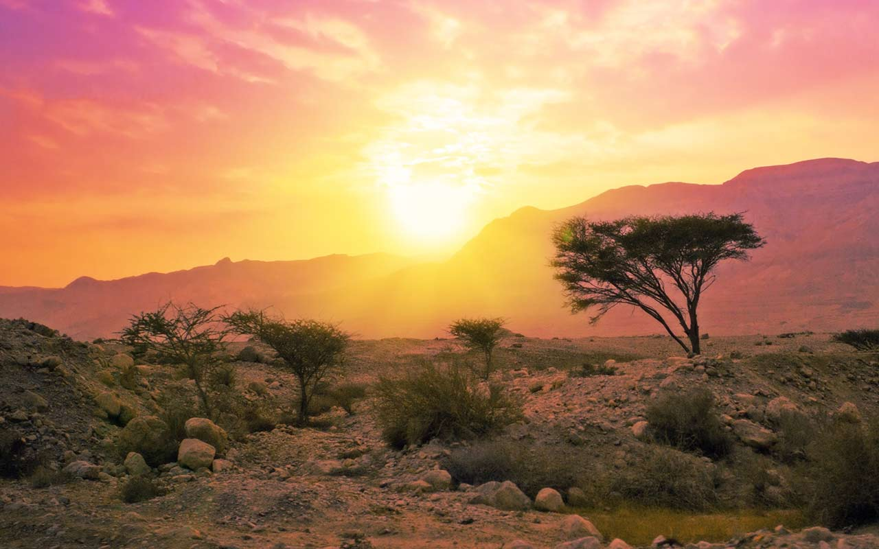 African images art backgrounds. Africa clipart background