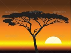 African clipart background. The perfect sunset arican
