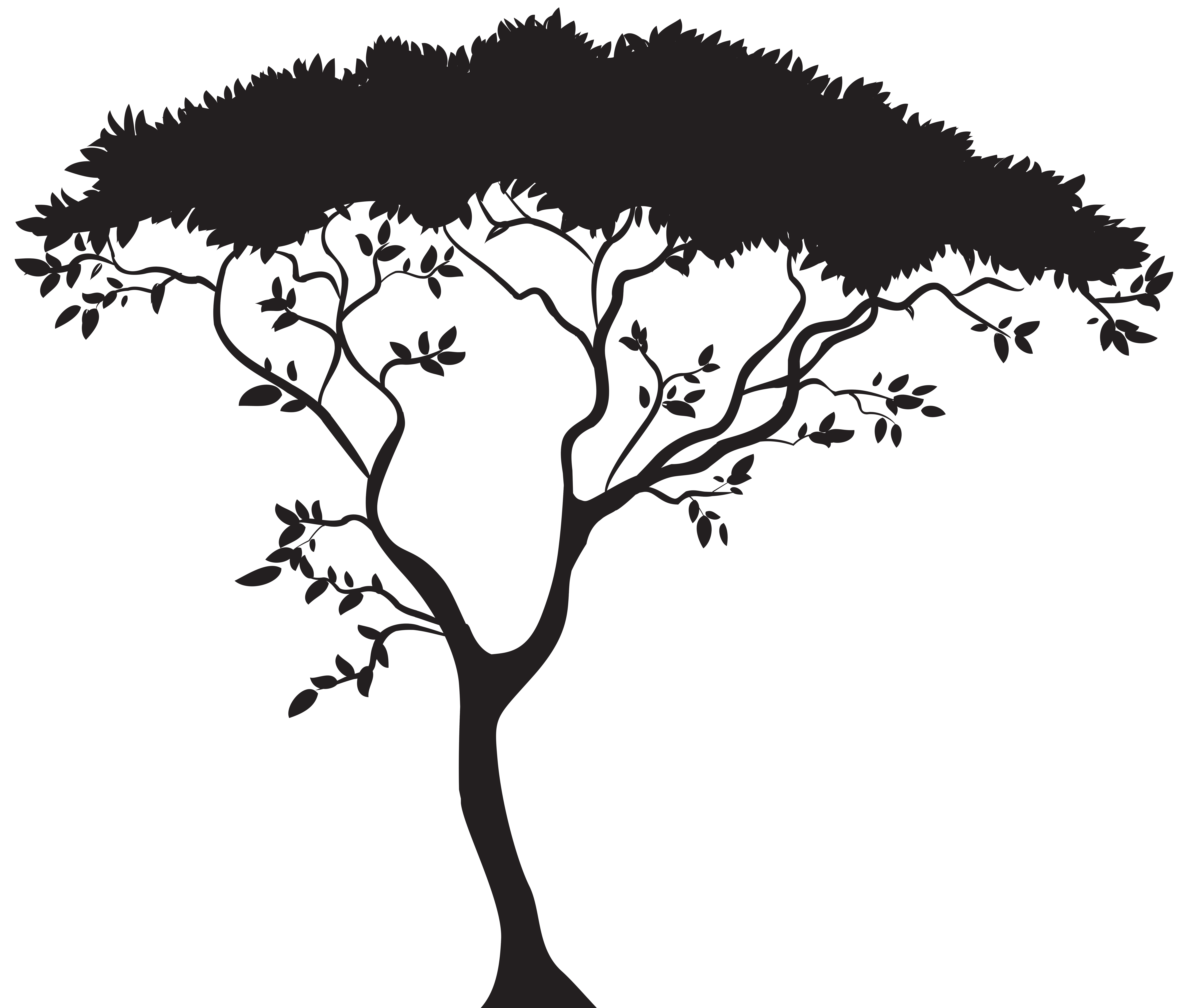 African tree silhouette png. Clipart trees paddy