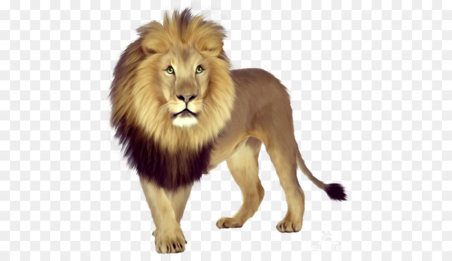 African clipart masai. East lion cubs tiger