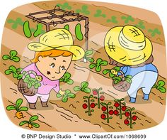 agriculture clipart agricultural