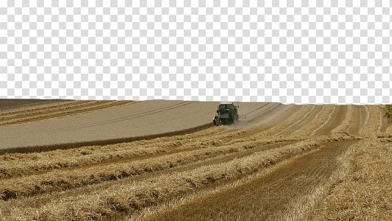 Agriculture clipart agriculture background. Wheat field rural area