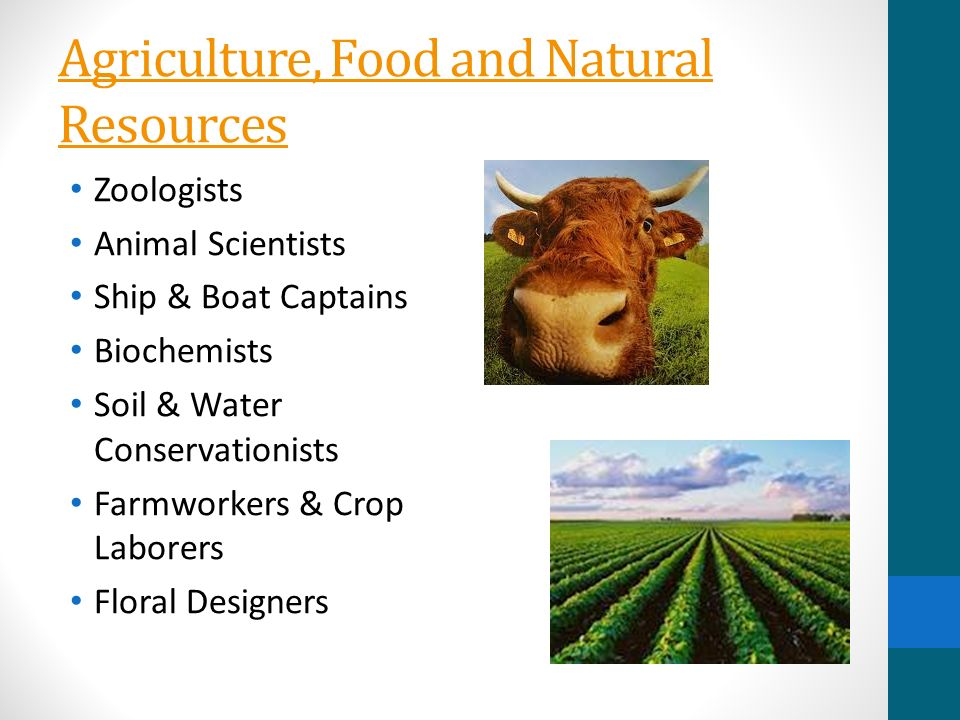 Agriculture clipart agriculture food and natural resource.  national career clusters
