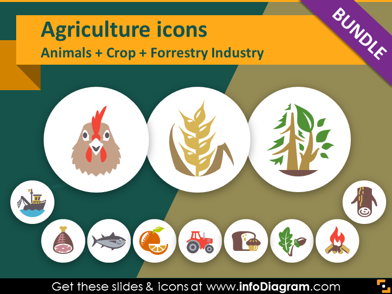 Food presentation icons for. Agriculture clipart agriculture sector