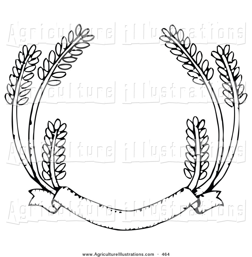 Agriculture of a blank. Wheat clipart banner