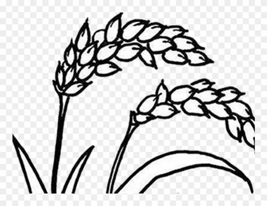 Agriculture clipart black and white. Png stock farming drawing