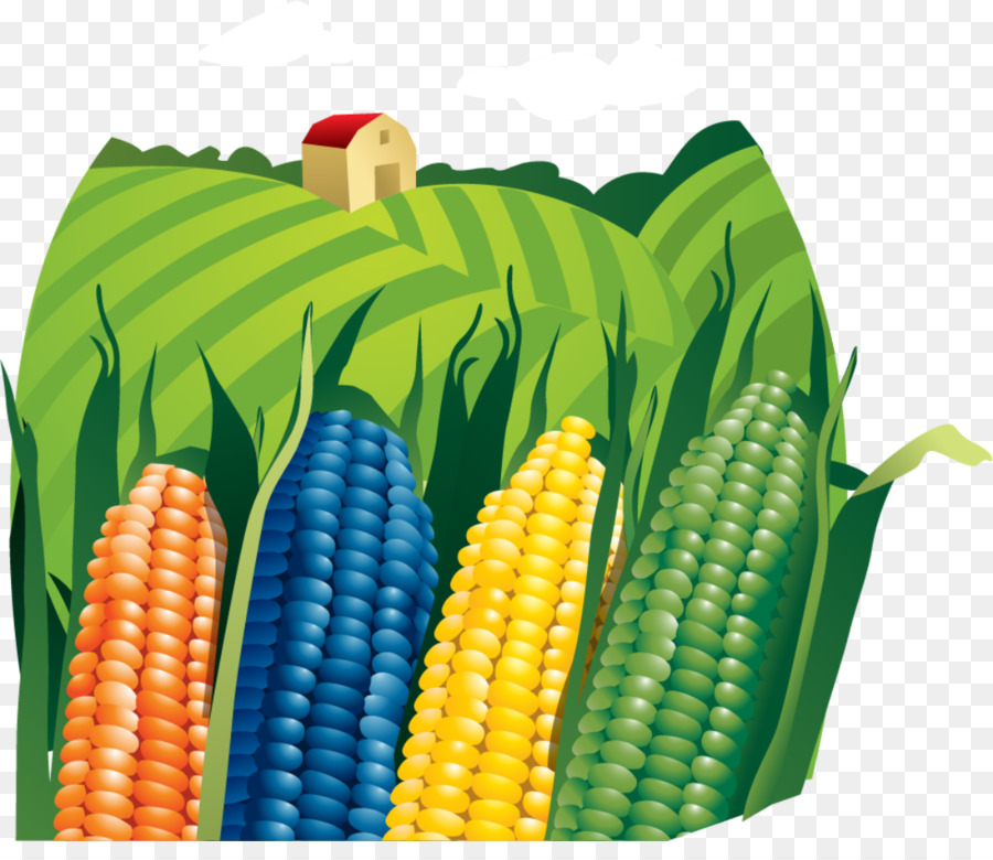 Farmer clip art png. Agriculture clipart corn field