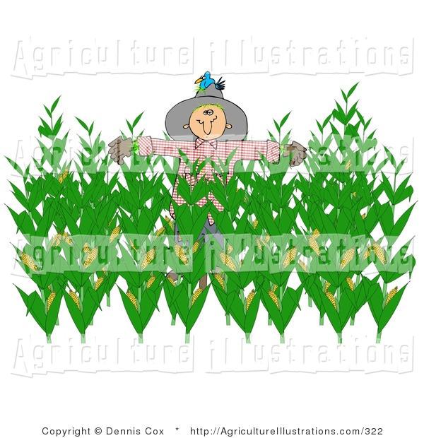 Of a nesting bluebird. Agriculture clipart corn field