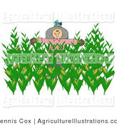 Agriculture clipart corn field. Royalty free stock designs