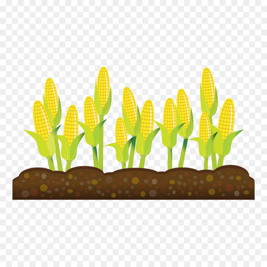 Farm field clip art. Agriculture clipart crop