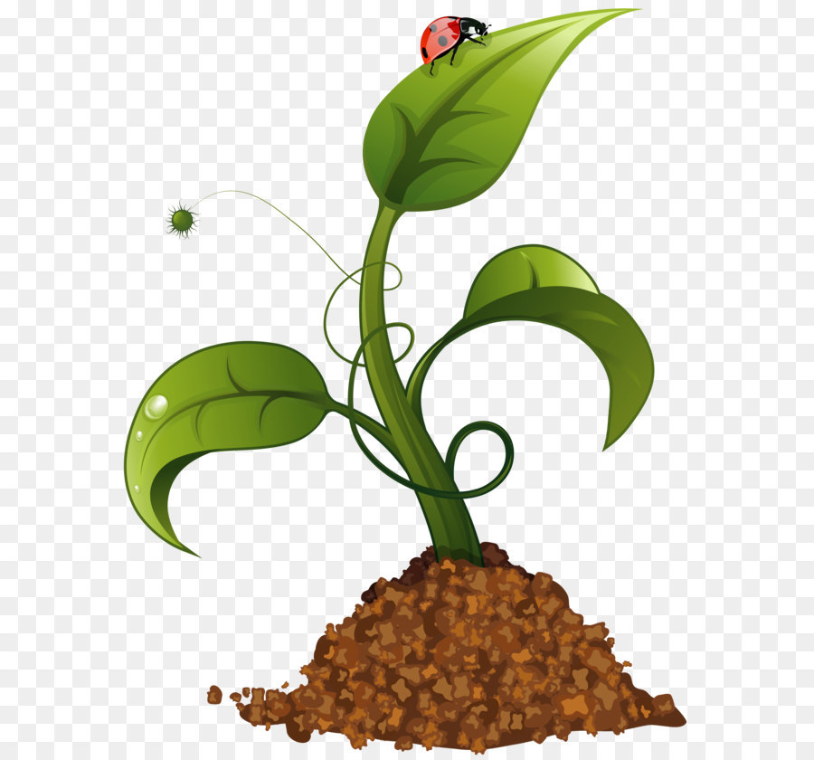 Agriculture clipart crop. Clip art spring flower