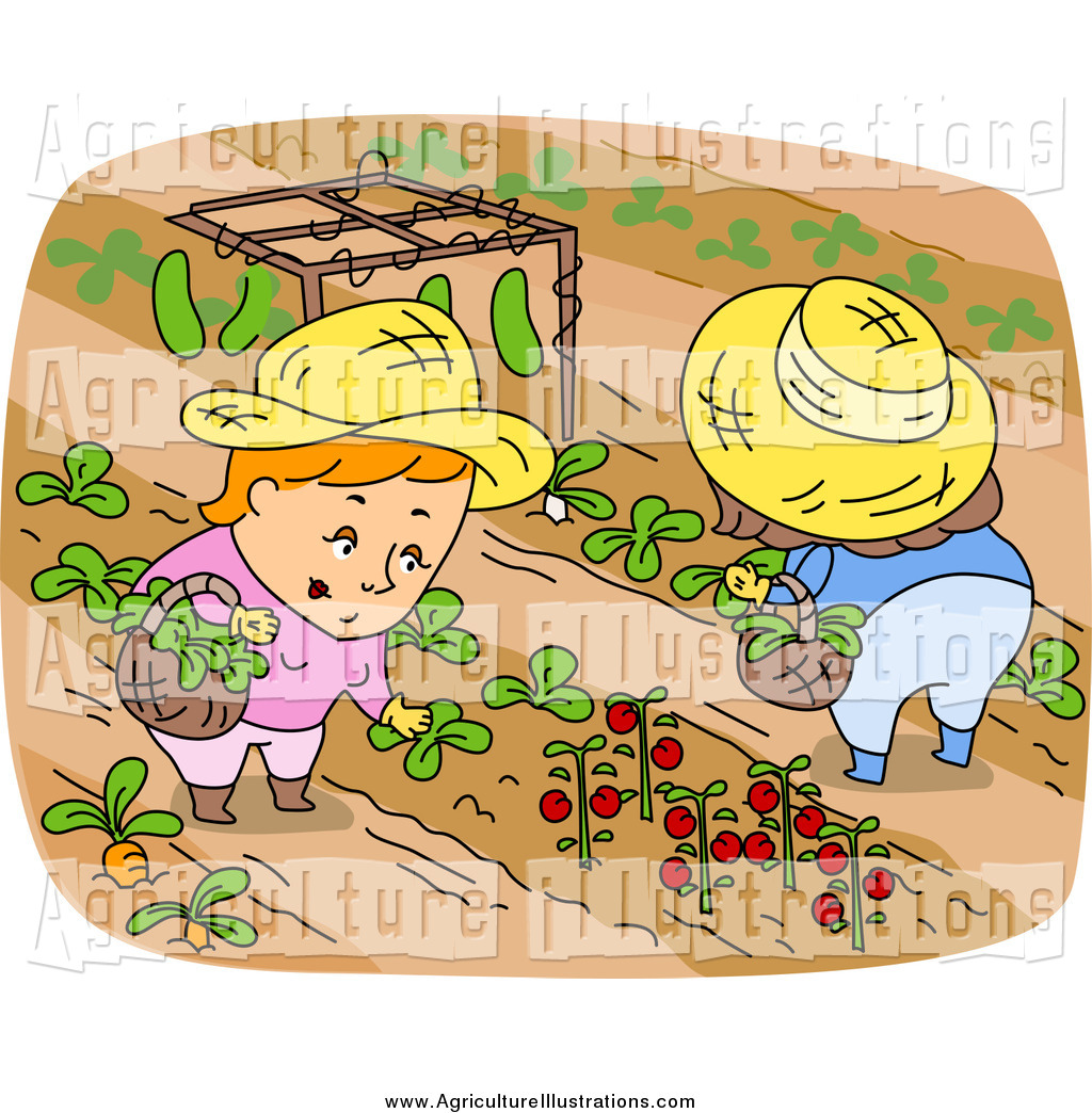 Agriculture clipart food. Of white farmers harvesting