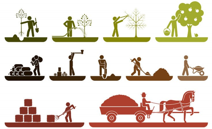 Futopedia marc dreyer reducing. Agriculture clipart food security