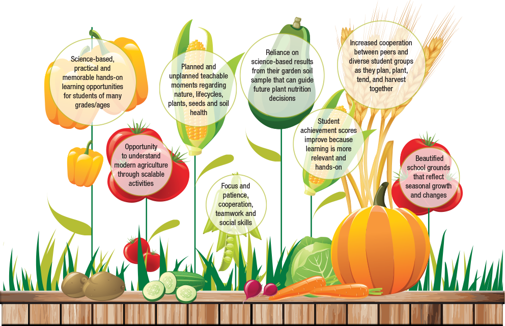 Learning gardens nutrients for. Environment clipart school garden
