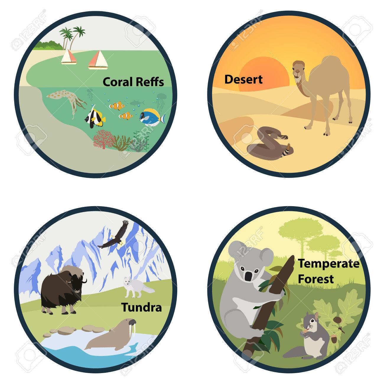 Desert clipart forest habitat. Cliparts free download best