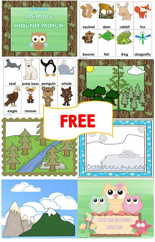 Air clipart habitat. Animal and match free