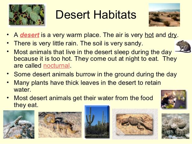 Air clipart habitat. Habitats for plants and