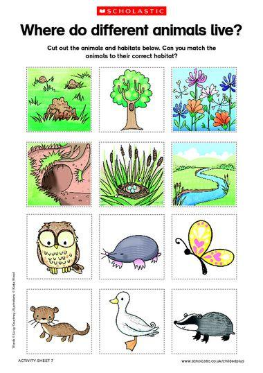 Animals and habitats free. Air clipart habitat