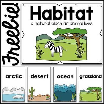 This set of poster. Air clipart habitat