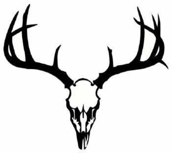 Dear skull deer image. Antlers clipart elk